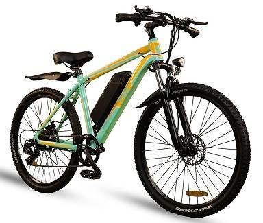 EMotorad T-Rex Battery Wali Cycle