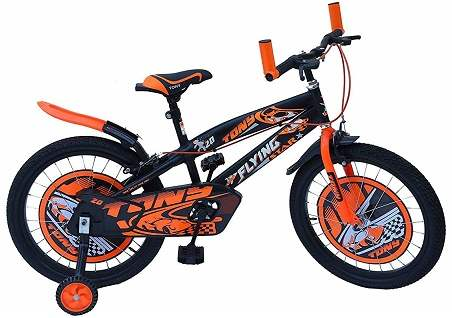 Raw Bicycles 16T Sports BMX